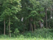 GORGEOUS .75 ACRE WOODED LOT- GOLF COMMUNITY in Aurora, Illinois